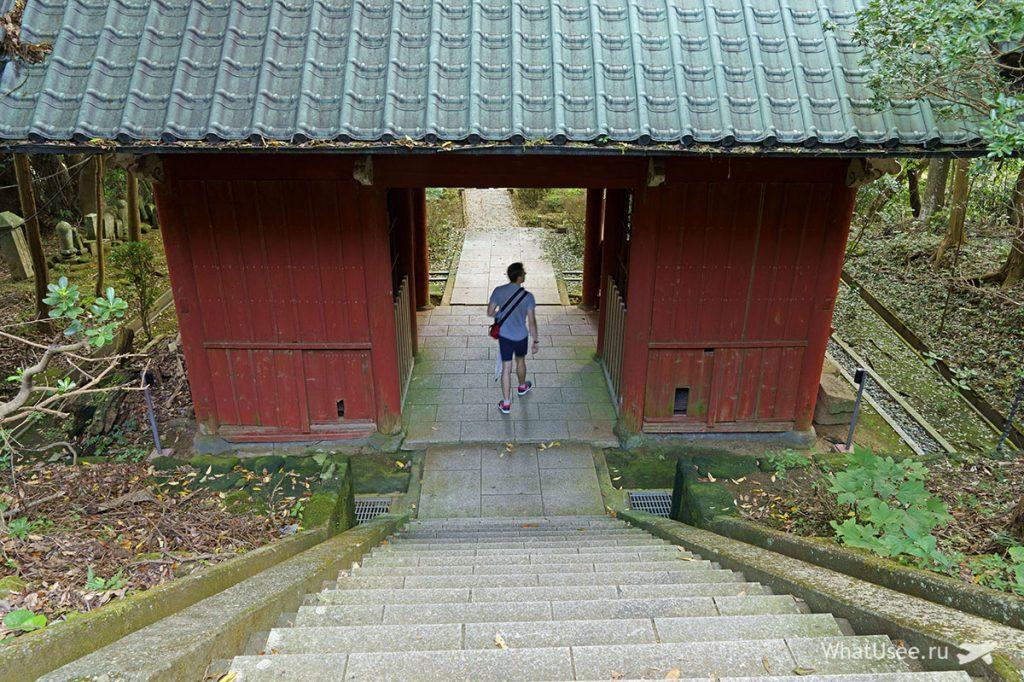 Впечатления от посещения горы Нокогирияма Токио