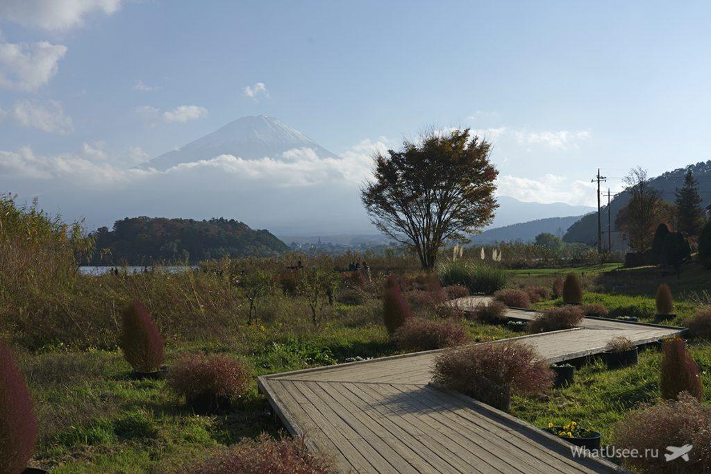 Чем заняться в Кавагучико в Японии
