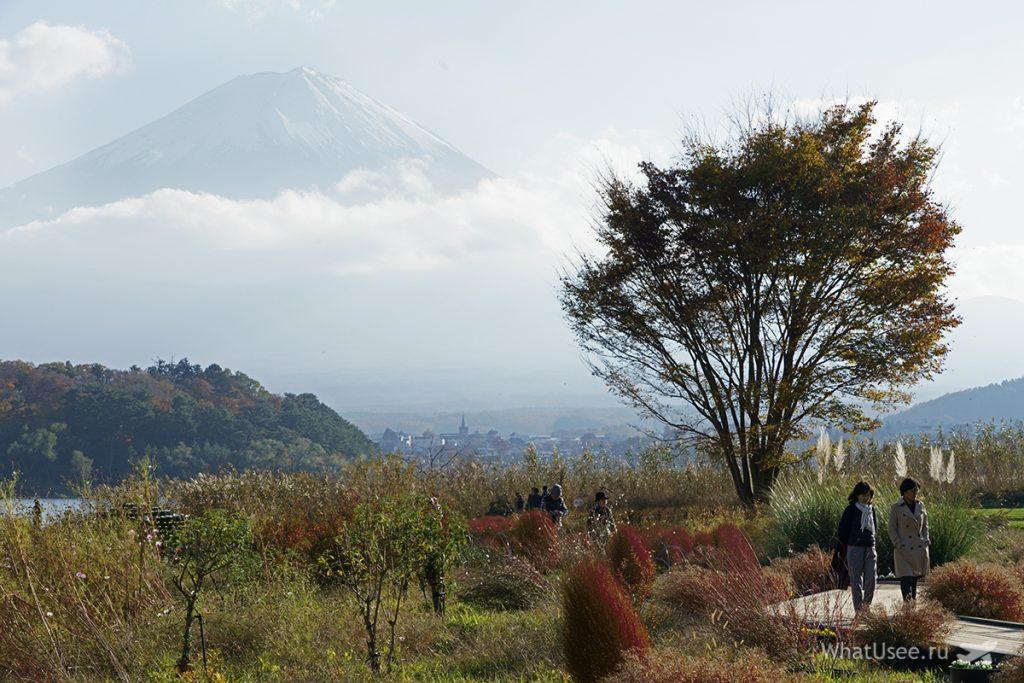 Вид на Фудзи с озера Кавагучико