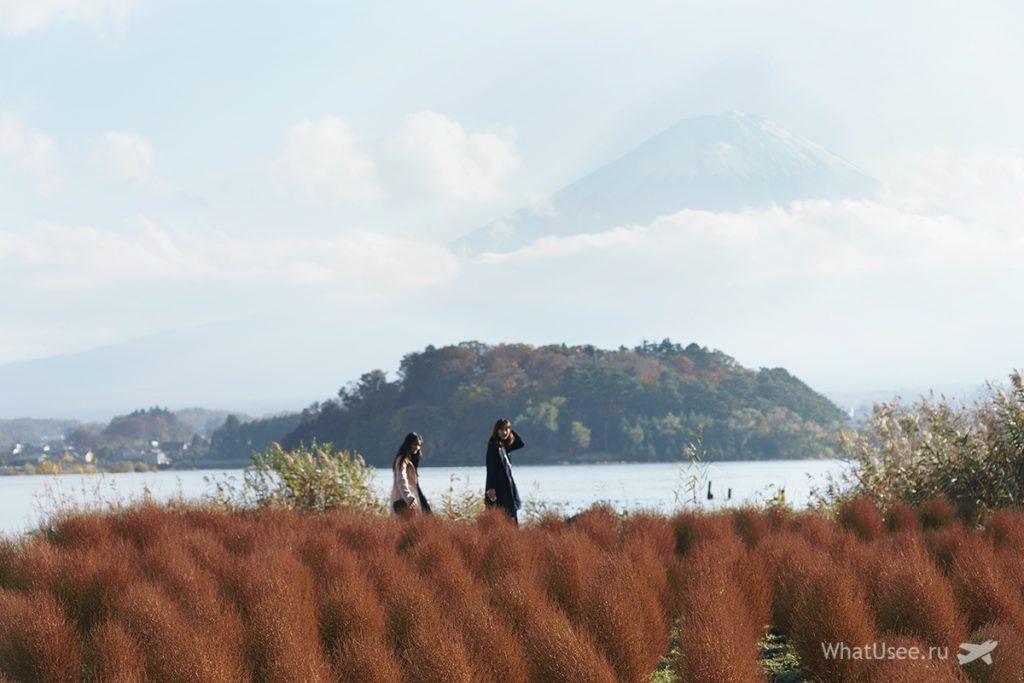 Вид на Фудзи с озера Кавагутико