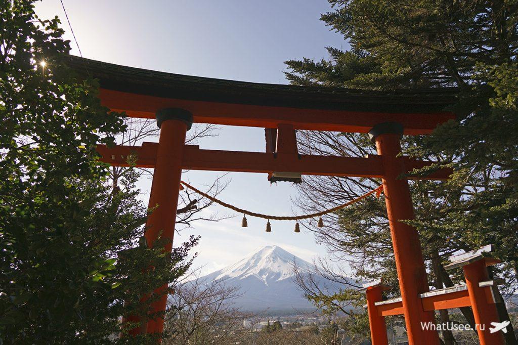 В храме Arakura Fuji Sengen Jinja