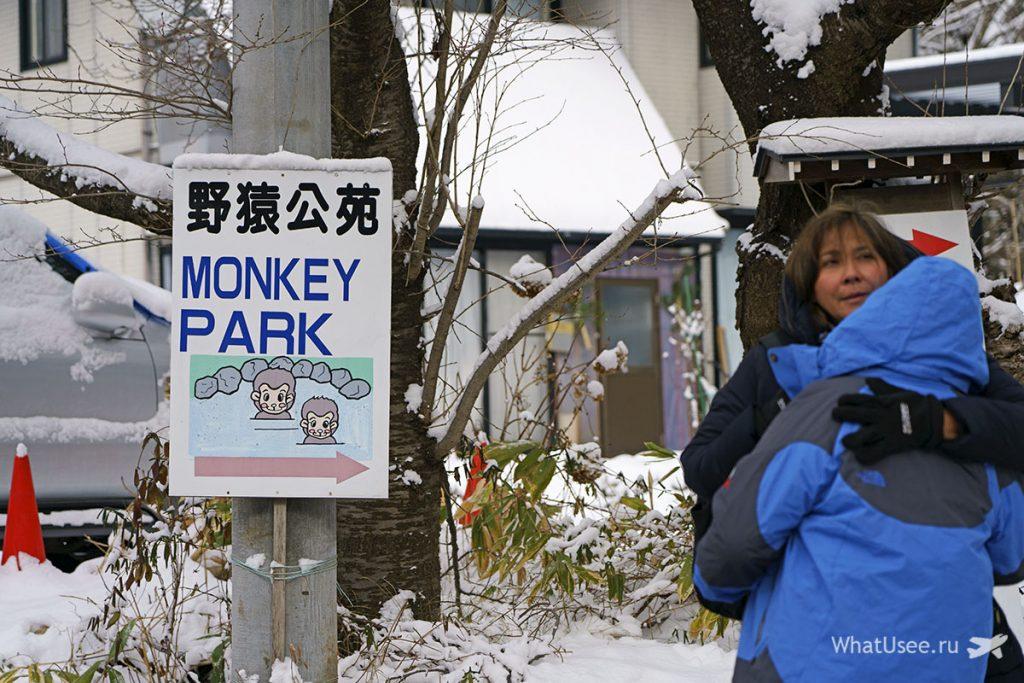 Jigokudani monkey park отзыв