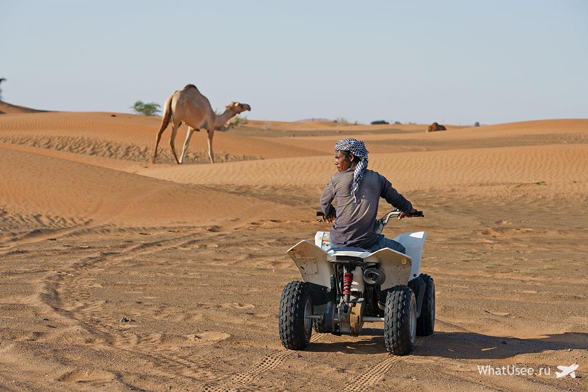 Заброшенная деревня Al Madam ОАЭ